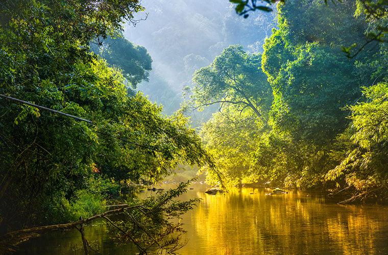 South America, AmazonBLOG