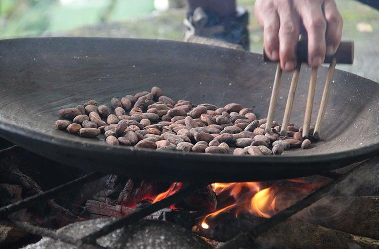 cocoa beans ecuador