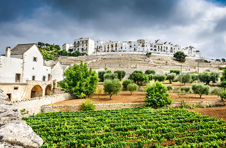 Italy Puglia wine travel