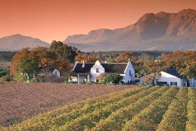 southafricawine